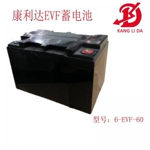 康利达6-EVF-60高尔夫球车电池