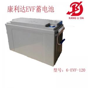 高尔夫球车专用6-EVF-120铅酸蓄电池