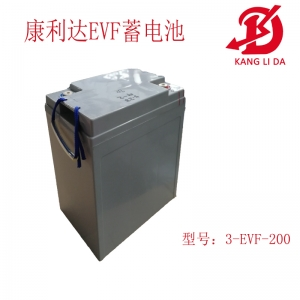 电动三轮车专用蓄电池3-EVF-200